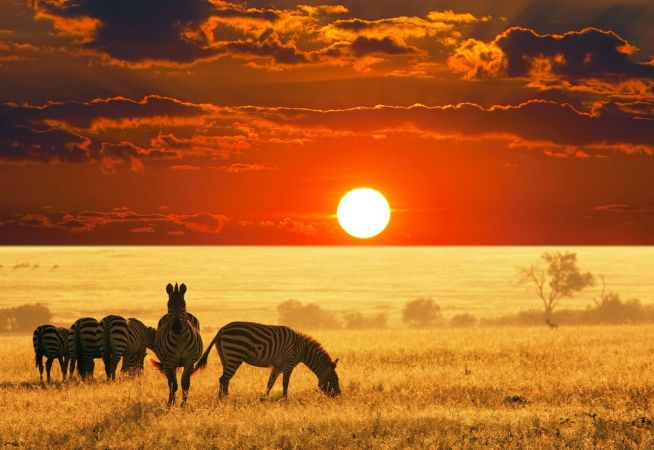 Luxury Holidays to Tanzania with Classic Resorts