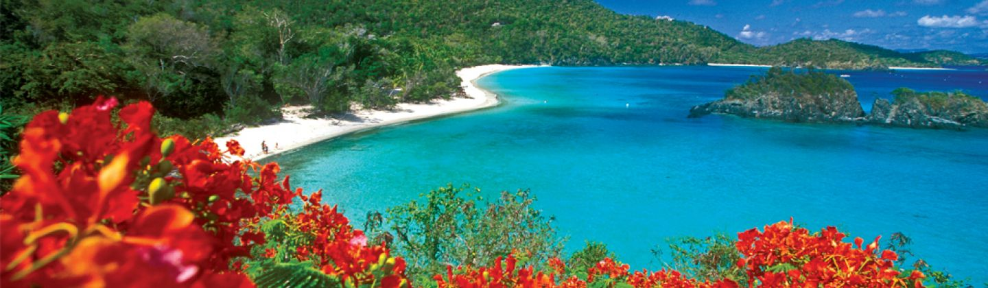 Caribbean Cruises with Classic Resorts